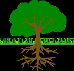 tree branchesandroots