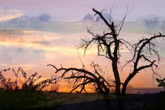 vicki hinze, legacy, canstockphoto.com/Tanor