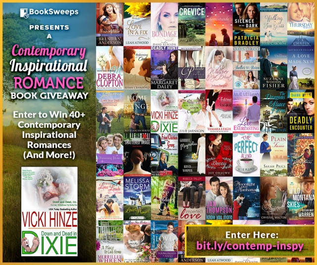 Inspirational Contest Giveaway, Vicki Hinze, Ryan Z