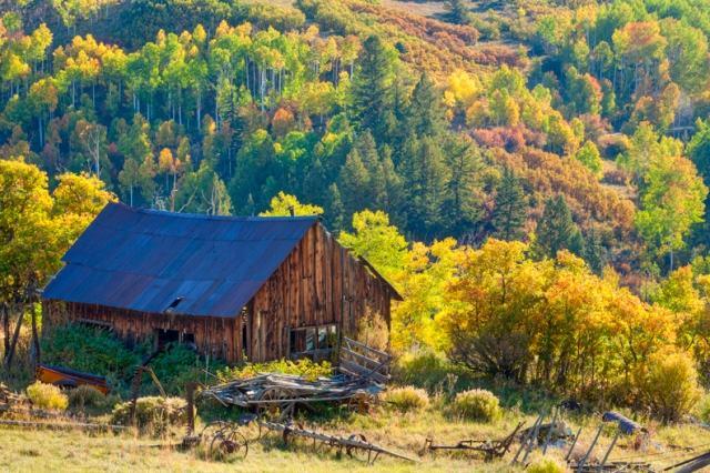 Colorado Autumn Barn