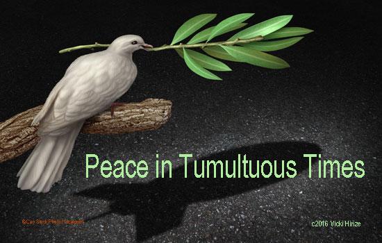 Peace in Tumultuous Times, Vicki Hinze