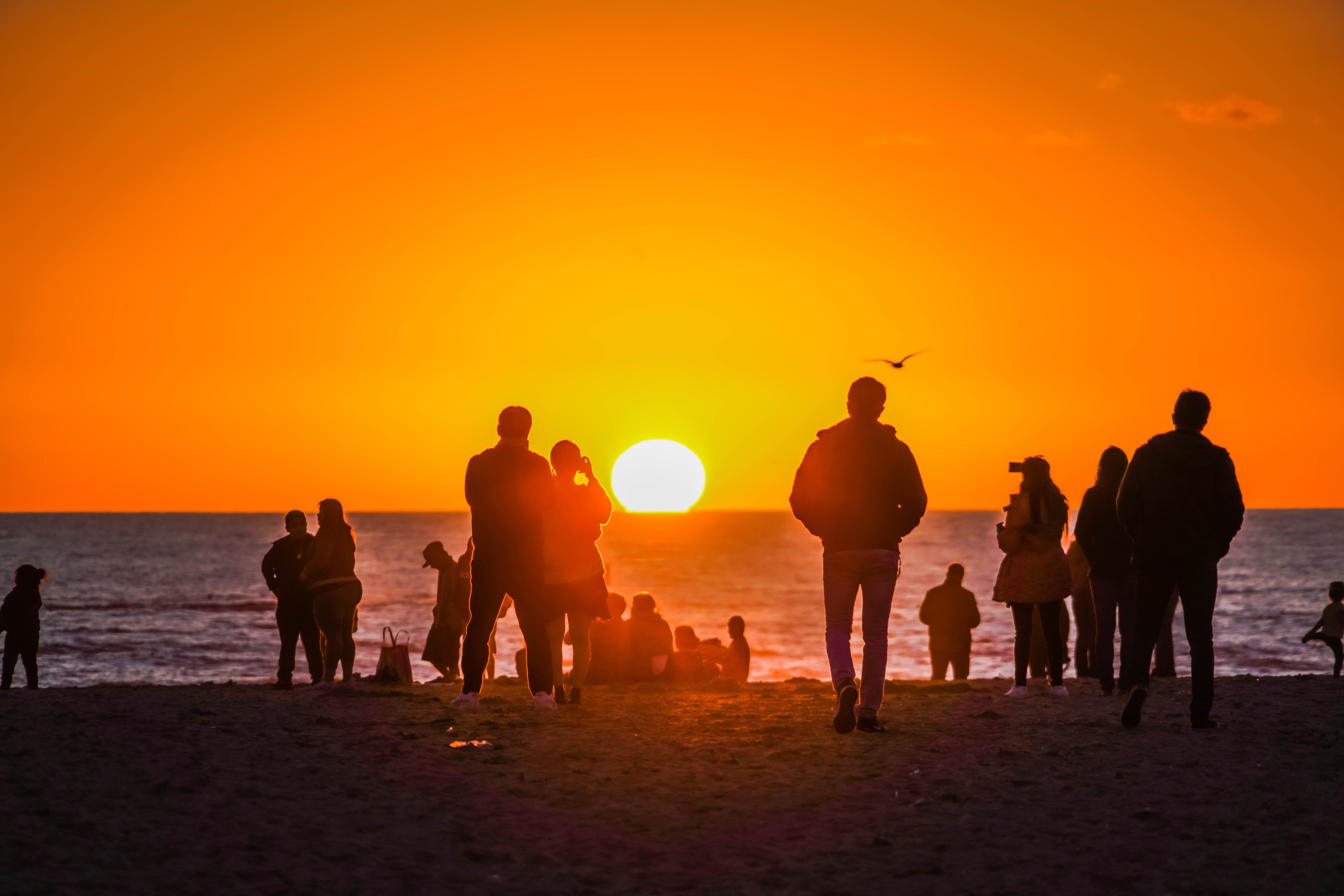 Families on beach at sunset